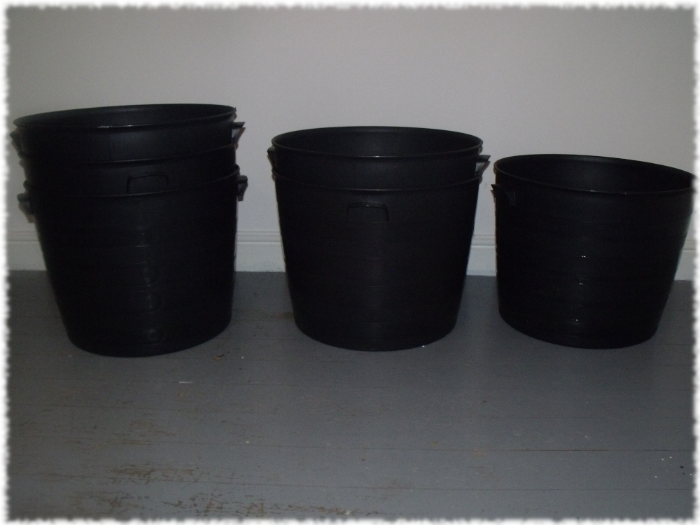 Random tubs to replace our decaying bedding boxes in the castle yard.